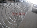 Galvanized blade barbed rope 3