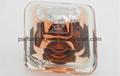 Designer Lancome Tersor Women Perfumes 1-1 Quality