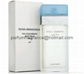 Tester Perfume D&G Light Blue Perfume Testers/White Box Perfumes