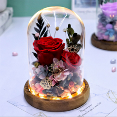 Preserved Rose Gift With LED Lights, Creative Gifts For Christmas Day