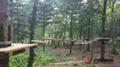 森林冒险探索拓展乐园器材 2