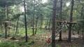 森林冒险探索拓展乐园器材 3