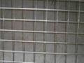 焊接铁丝网