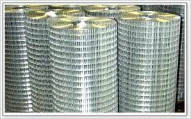 镀锌电焊网 1