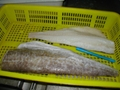 Cod (Atlantic cod & Pacific cod) loin, light salted G.morhua;  G. Macrocephalus