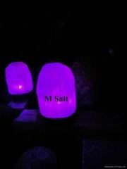 Himalayan USB Natural Salt Lamp