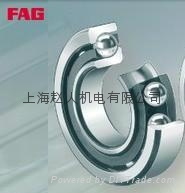 上海FAG進口軸承 1