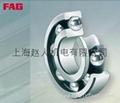 上海FAG進口軸承 2