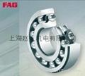 上海FAG進口軸承 4