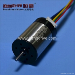 Brushless Dc motor B1625M