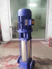 GDL多级泵