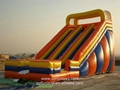 Giant Inflatable Bouncy Water Slide Largest Bouncer Slide 3