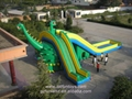 Giant Inflatable Bouncy Water Slide
