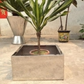 不鏽鋼方形花盆