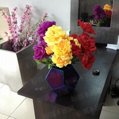 不鏽鋼花盆電鍍彩色