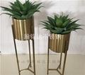 不锈钢圆花盆架 电镀钛金花架