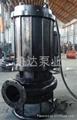 莱芜鲁达耐磨抽泥泵  5