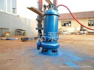 莱芜鲁达无堵塞污水泵  2