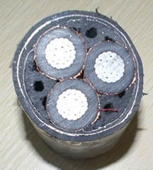 YJLV power cable