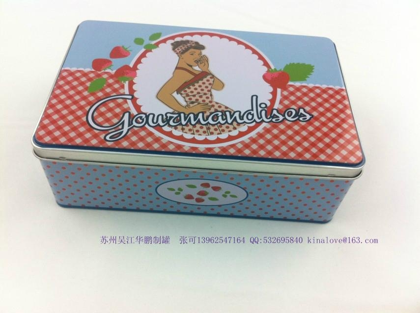 food tin box for cookie 1