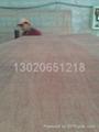 供应12mm包装板