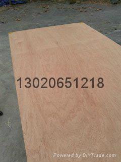 供应9mm多层板胶合板 2