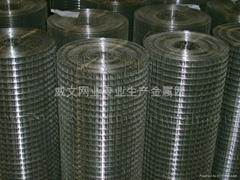 小絲鍍鋅電焊網價格