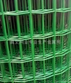 CHEAPEST HOLLAND MESH