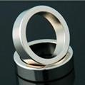圓環磁鐵 1