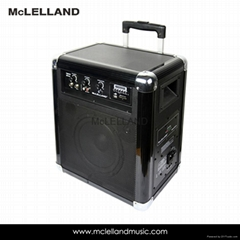 Bluetooth Compact Speaker System with wireless Technology