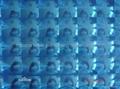3D self adhesive plastic film/photo protection plastic film 2