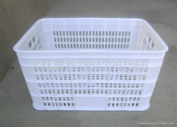 525塑料水果筐 2