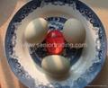 Kitchen Novelty Egg Timer
