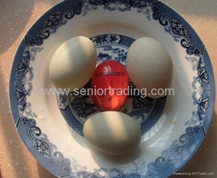 Kitchen Novelty Egg Timer