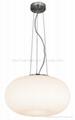 Pendant lamp  chandelier lamp table lamp