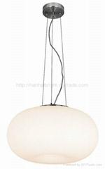 Pendant lamp  chandelier lamp table lamp  wall lamp ceiling light home light