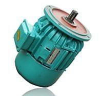 三相异步电动机 ZDY 121-4 0.8KW