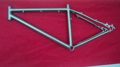 Titanium MTB bicycle frame