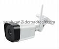 P2P Wireless WiFi Surveillance Network