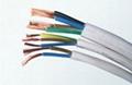 RVV软护套电线