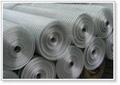 安平1/2后电镀电焊网 1