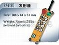 台湾禹鼎起重机遥控器F24-8