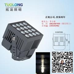 新款開模LED投光燈照樹燈