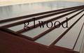 Brown filmfaced plywood