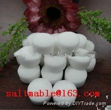 water treatment salt 2