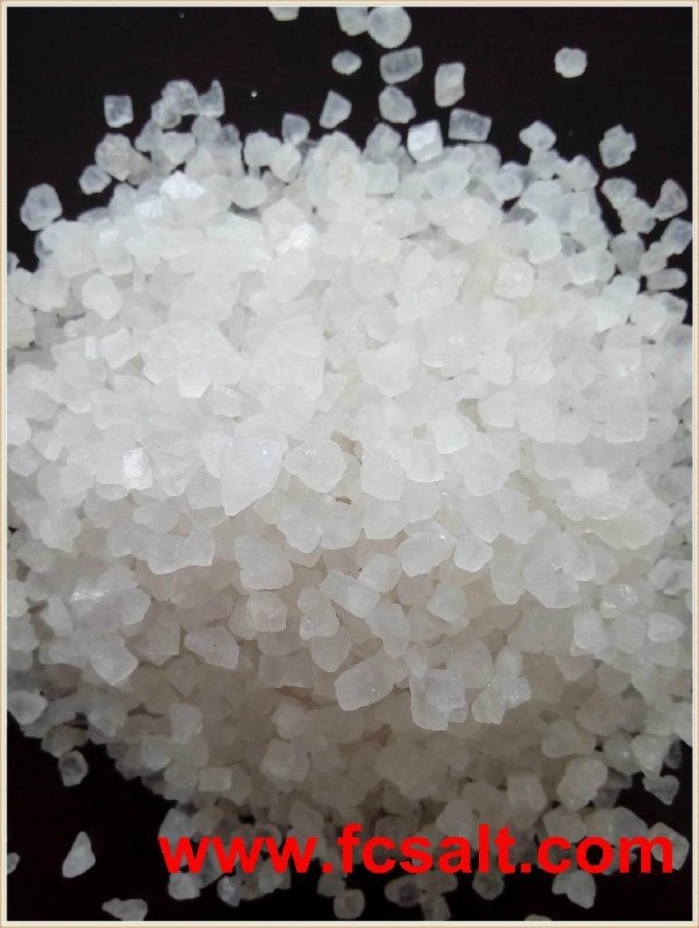 Snow Melting Salt 3