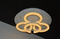 2015 New design High quality decorative ceiling modern light
