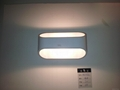 Contemporary Fashion wall lamp beside decoration light MiL-MB3337 3