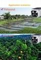 Solar Wifi CCTV 5