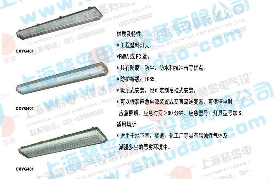 CXYG401 -2*36W三防双管荧光灯 1